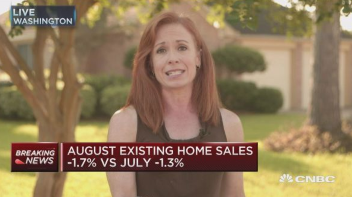 U.S. Existing-Home Sales Enter 14th Straight Month Of Declines (#GotBitcoin?)