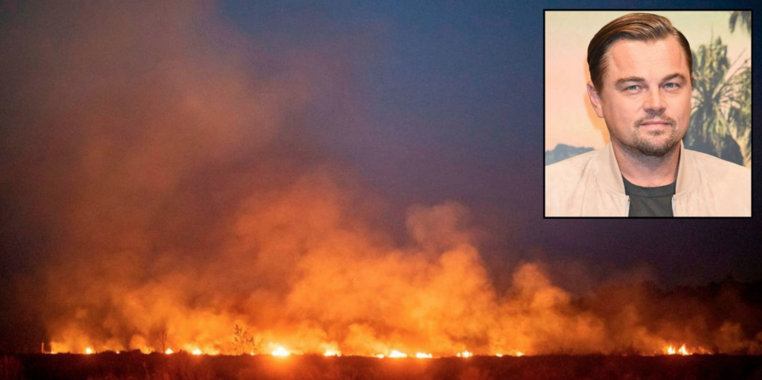 Fires Destroy Amazon Rain Forest, Blanketing Brazilian Cities In Smog (#GotBitcoin?)