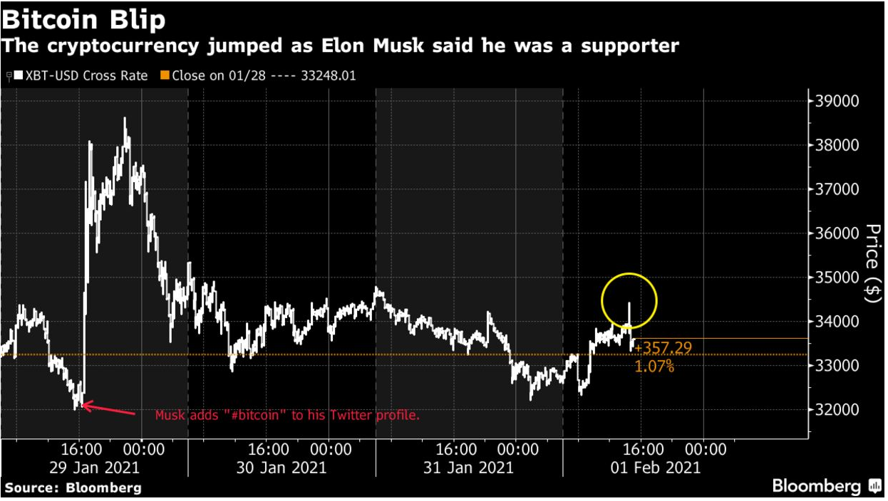 """Mega-Bullish News For Bitcoin As Elon Musk Says, """"Pay Me In Bitcoin"""" And Biden Says, """"Ignore Budget Deficits""""!"""